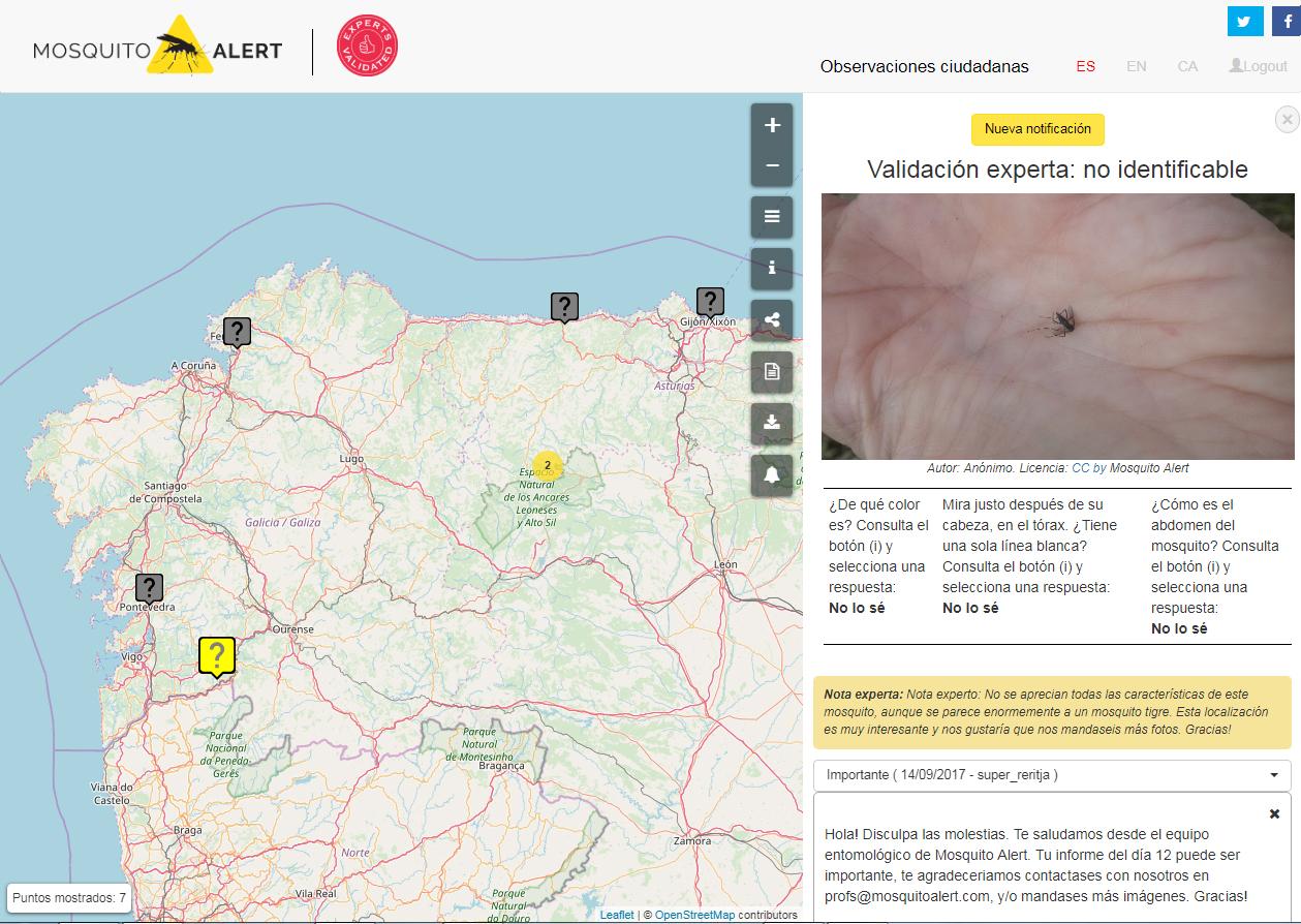 Captura de pantalla de la observación del mosquito en el mapa.