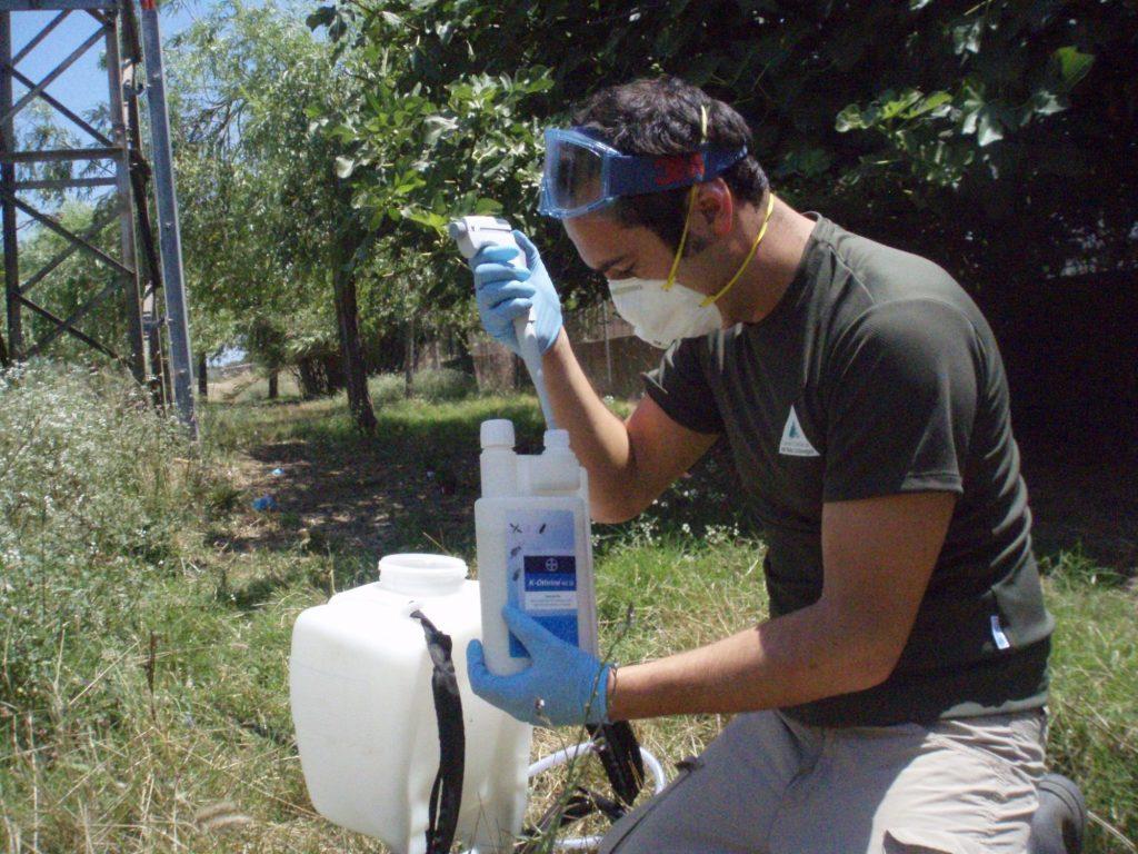 Controlar y eliminar los puntos de cría es fundamental para reducir la población de mosquito tigre.