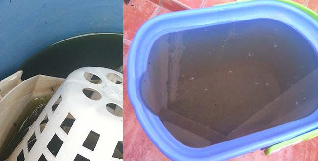 El material de limpieza, si no tiene productos como lejía, puede ser lugar de cría si acumula agua. Mosquito Alert CC-BY