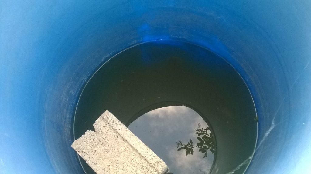 Un bidó amb aigua acumulada pot esdevenir un lloc de cria. Mosquito Alert CC-BY