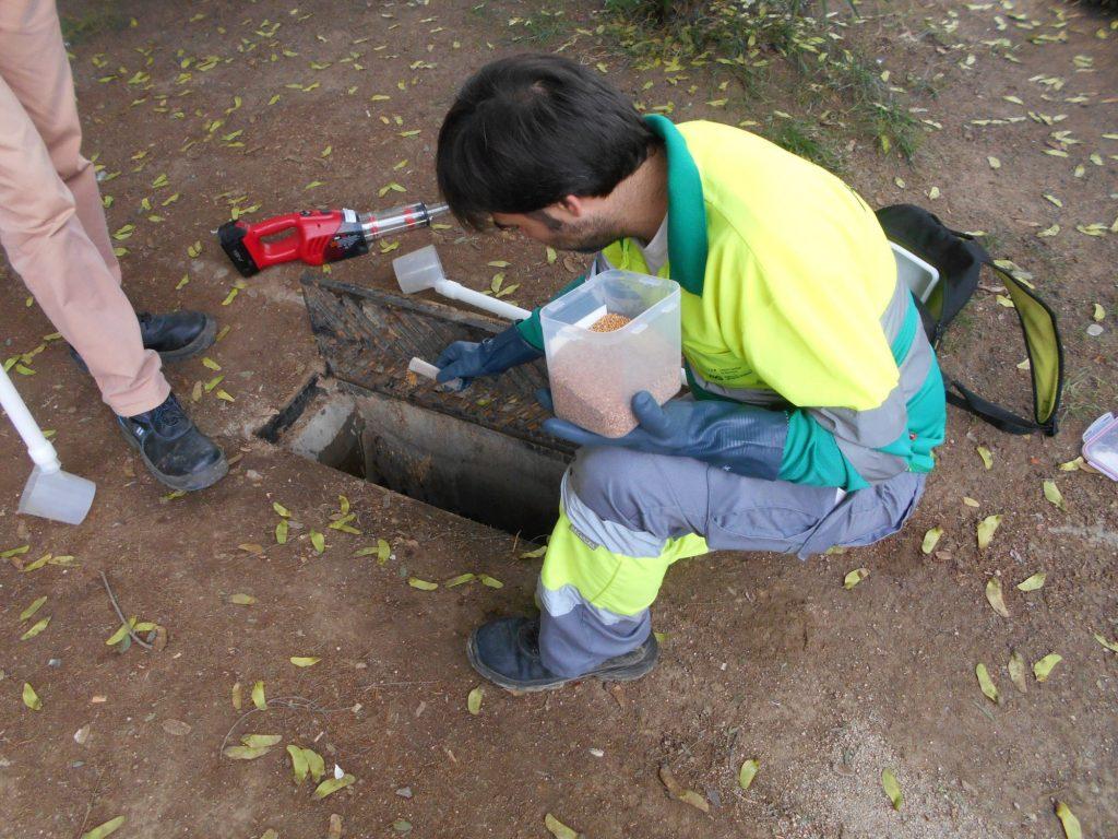 Técnicos de la ASPB haciendo tratamiento en Barcelona. Foto: ASPB