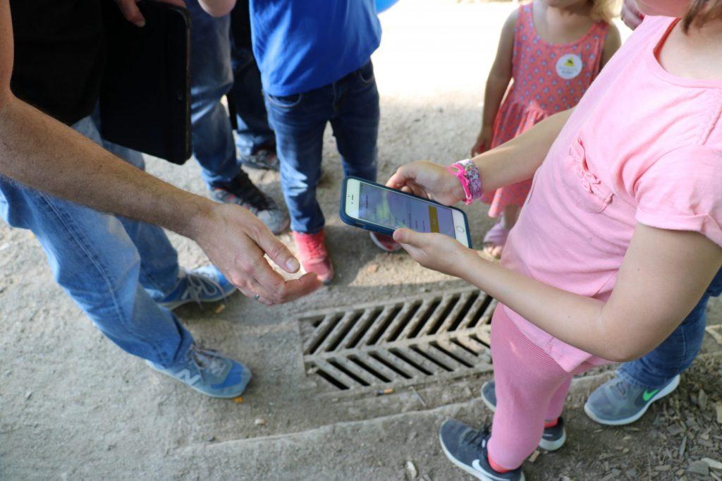 La ciudadanía ayuda a localizar lugares de cría. Foto: Mosquito Alert CC-BY
