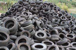 Neumáticos usados mosquito tigre Aedes albidus Mosquito Alert