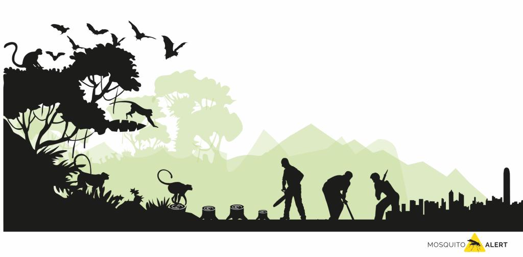 Emergencia enfermedades deforestación