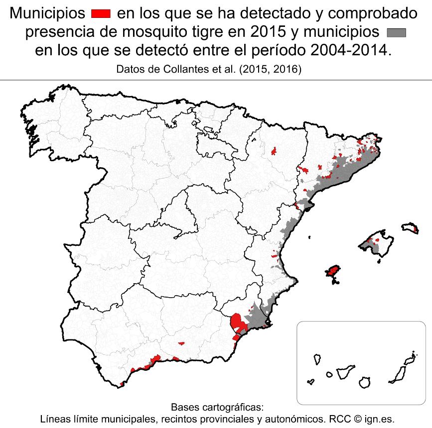 Distribución del mosquito tigre en España con los nuevos municipios con el insecto invasor.